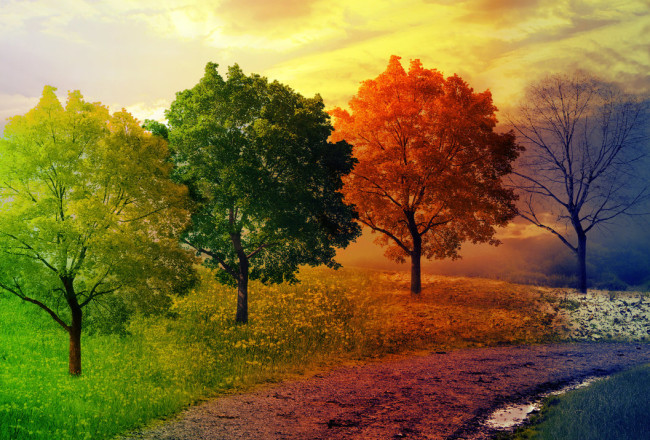land_of_all_seasons_by_joseph_pereira-d47jxd0